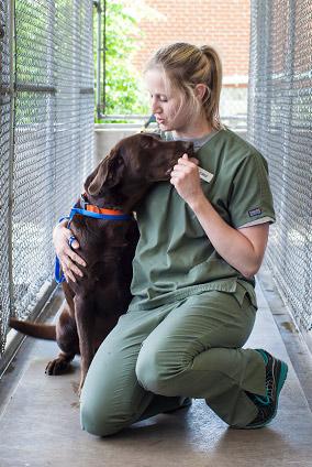 Animal Medical Center of Jefferson City