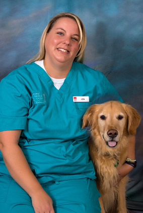 veterinary, jeff city