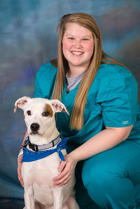 jefferson city veterinary