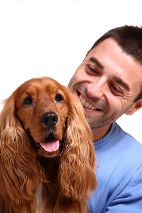 jefferson city pet wellness exam