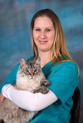 veterinary, jefferson city